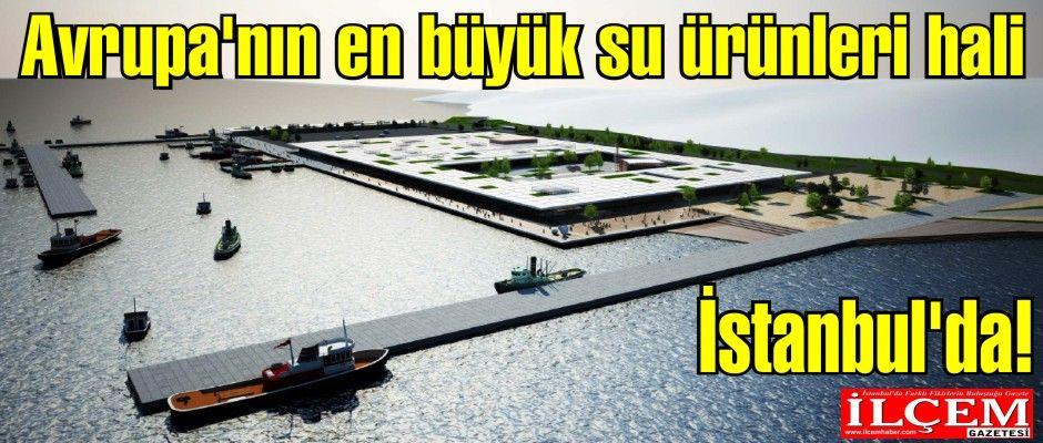 Avrupa'nın en büyük su ürünleri hali İstanbul'da!
