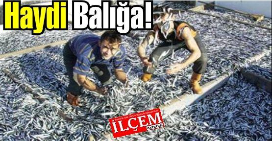 Balık severler Müjde! Av yasağı sona erdi.