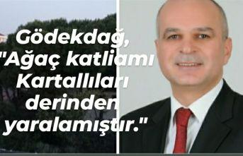 """Gödekdağ, """"Ağaç katliamı Kartallıları derinden yaralamıştır."""""""