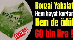 Bonzai satanı yakalat hem 60 bin lira kazan, hem de hayat kurtar!