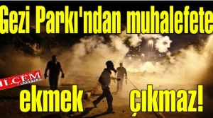 Gezi parkı eylemleriyle AK Parti'nin çökeceğini beklemek fazla hayalcilik!