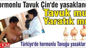 Hormonlu Tavuk Çin'de yasaklandı!