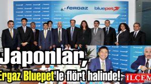 Japon devi Saisan'dan, Ergaz Bluepet'e enerji alanında işbirliği teklifi!
