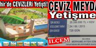 Nevşehir'de cevizleri yetişti, Ceviz Meydanı yetişmedi!