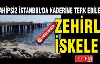 Sahipsiz İstanbul'da kaderine terk edilmiş...