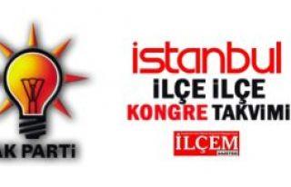 AK Parti İstanbul İlçe Teşkilatlarının kongre...