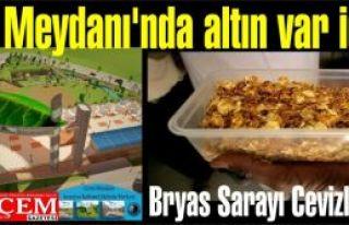 Ceviz Meydanı'nda altın var iddiası! Bryas Sarayı...