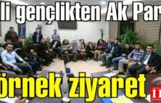 CHP'li Gençlerden Ak Parti'ye örnek ziyaret