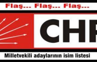 CHP'nin kesinleşmiş milletvekili adaylarının isim...
