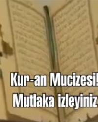 İşte Kur-an Mucizesi. Karıncaları Kur-an'ı Kerim nasıl durdurdu! Mutlka izleyiniz.